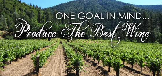 One goal in mind... Produce The Best Wine